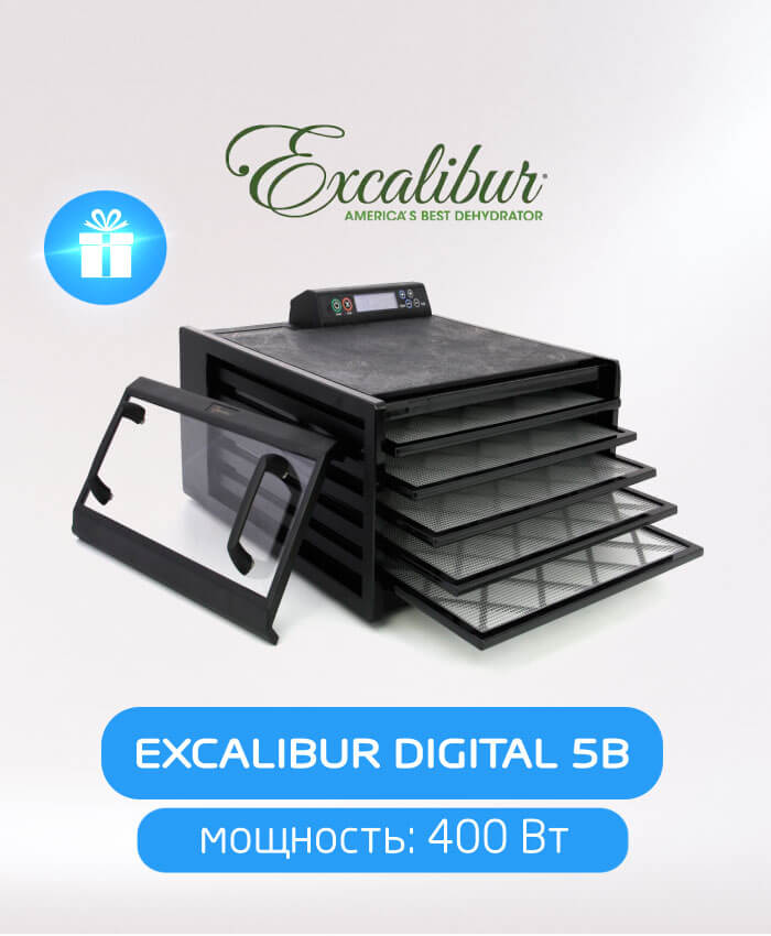 Excalibur Digital 5B