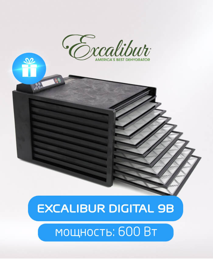 Excalibur Digital 9B